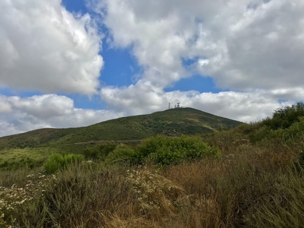 Black Mountain Summit from the road